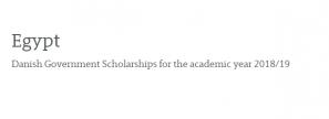 منحة دراسية من الحكومة الدانمركية لدراسات البكالوريوس والدراسات العليا