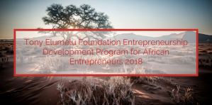 Tony Elumelu Foundation Entrepreneurship Development Program for African Entrepreneurs 2018