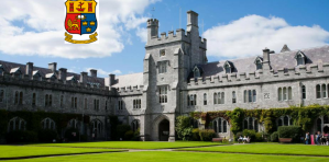 Bourse de maîtrise - L'École des langues, littératures et cultures du University College Cork 2018, Irlande