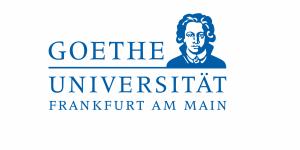 The Goethe Goes Global scholarship for master's programmes