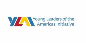 Programme de boursiers professionnels YLAI