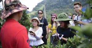 Rejoignez Climate Tracker aux négociations de la COP25 sur le climat au Chili