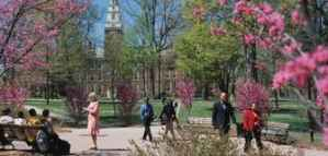 Funded Bachelor Scholarships from Berea College in the US 2019
