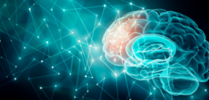Competition for Neuroscience Researchers and the Chance to Win a Prize of up to  10,000