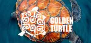 Golden Turtle Competition for Artists and Photographers and the Chance to Win a Prize up to  2000