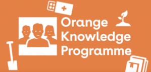 Master Scholarships for Professionals from the Orange Knowledge Program in the Netherlands