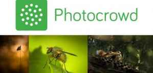 Flowers Photography Competition from Photo Crowd