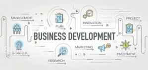 Internship Opportunity in the Field of Business Development Online or in Spain
