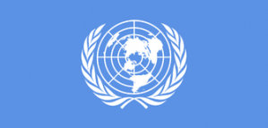 Offre d'emploi aux États-Unis: Chargé de programme à l'ONU