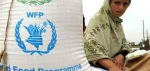 Job Opportunity in Italy with WFP: Program Innovative Financing Consultant 2020