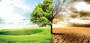 Climate Risk Research Award for PhD and Postdoctoral Researchers from Allianz