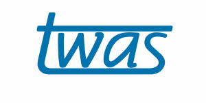 TWAS-SISSA-Lincei Research Cooperation Visits Programme