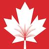 Bourses de l'Université canadienne de Dubaï