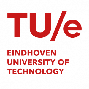 PhD on electrokinetically driven microchips for immuno-engineering
