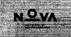 Développement international et politique publique, Nova School of Business and Economics, Portugal