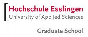 Gestion industrielle internationale, Université des sciences appliquées d'Esslingen, Allemagne