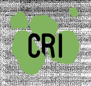 Master AIRE - Sciences du Numérique, Le Centre de recherche et d'interdisciplinarité (CRI), France