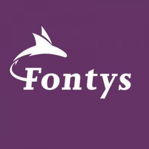 Gestion commerciale, Université des sciences appliquées de Fontys, Pays-bas