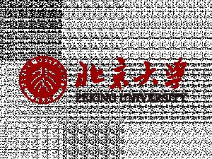 Mécanique théorique et appliquée, Université de Pékin, Chine