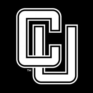 Administration des affaires, Clarkson University, États-Unis