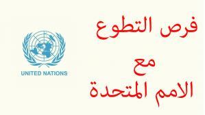 تطوع مع الأمم المتحدة عبر الإنترنت